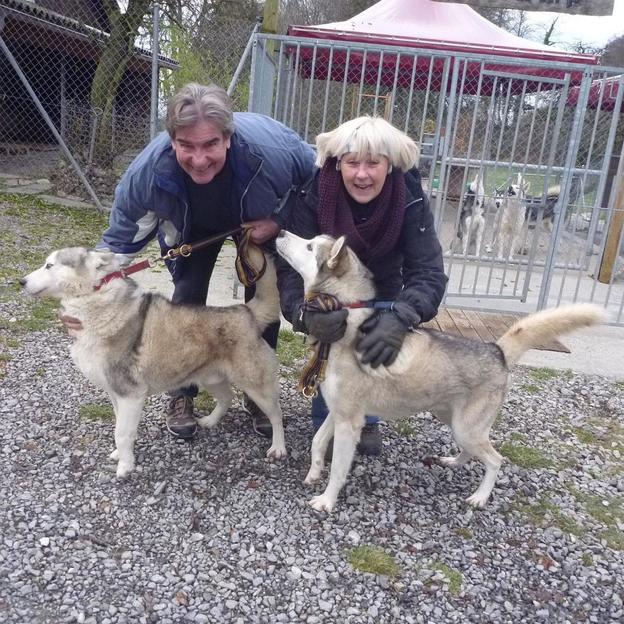 Exklusiv Schlittenhunde Wagenfahrt im Herbst