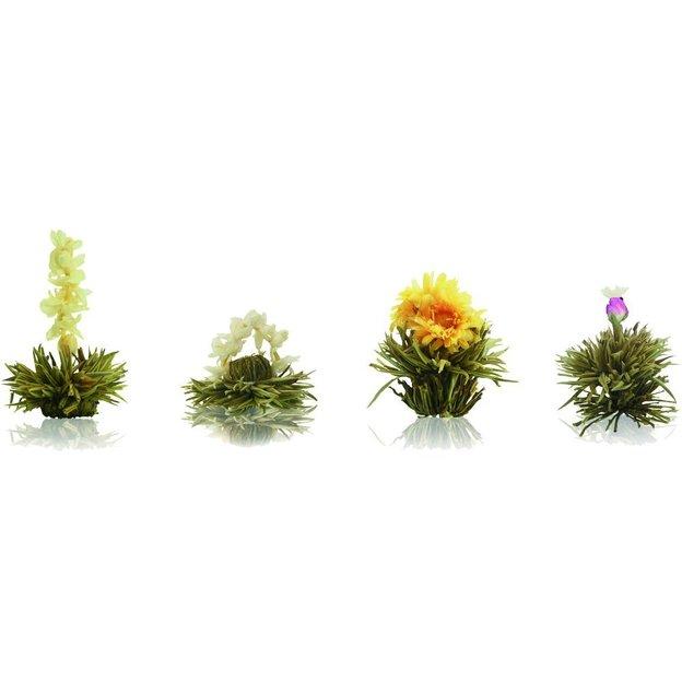Fleurs De The Creano Bio Ideecadeau Ch