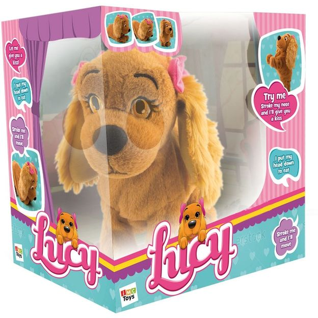 Lucy the cute dog