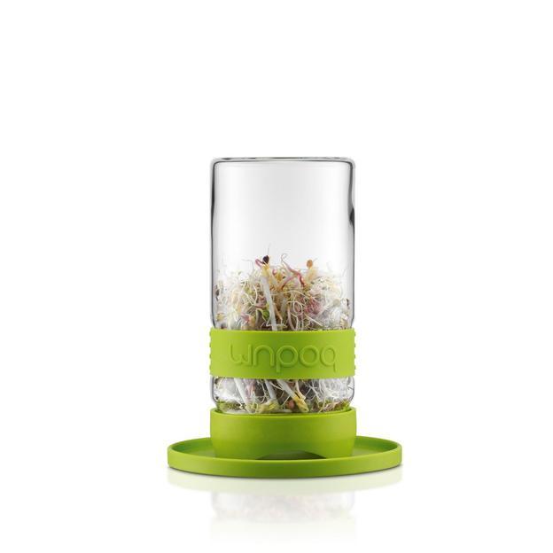 Bodum Grow Green Keimglas