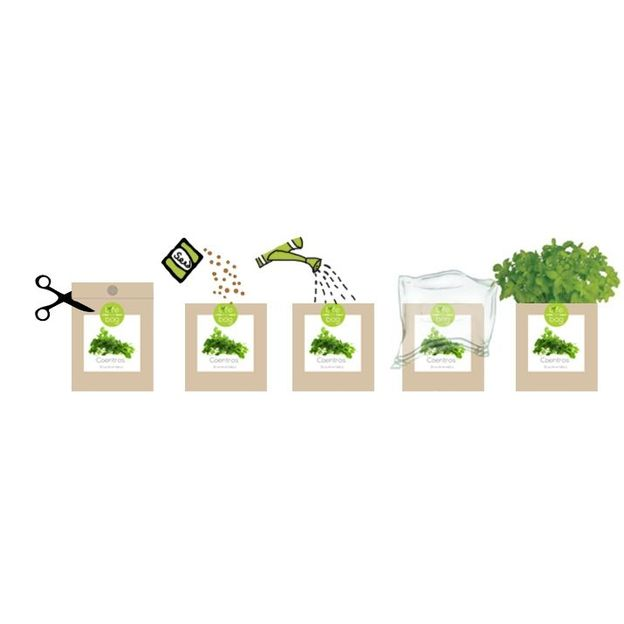 Grow Bags Kräuter