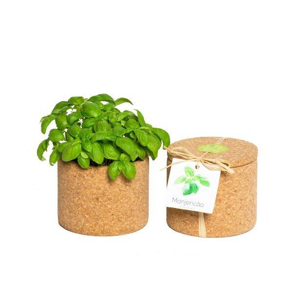 Kräutergarten im Kork Grow Cork Pot