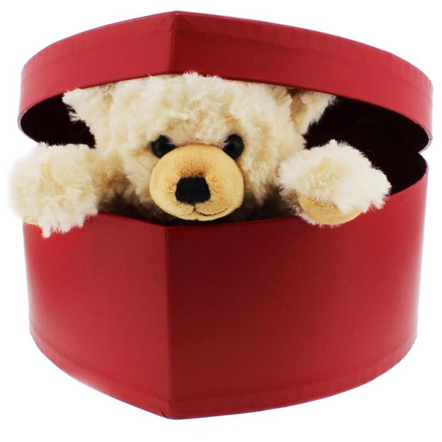 Personalisierbarer Steiff-Teddy in Herzbox