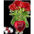 Rosen rot mit Lindor Geschenkebox Gr. 03er Bund