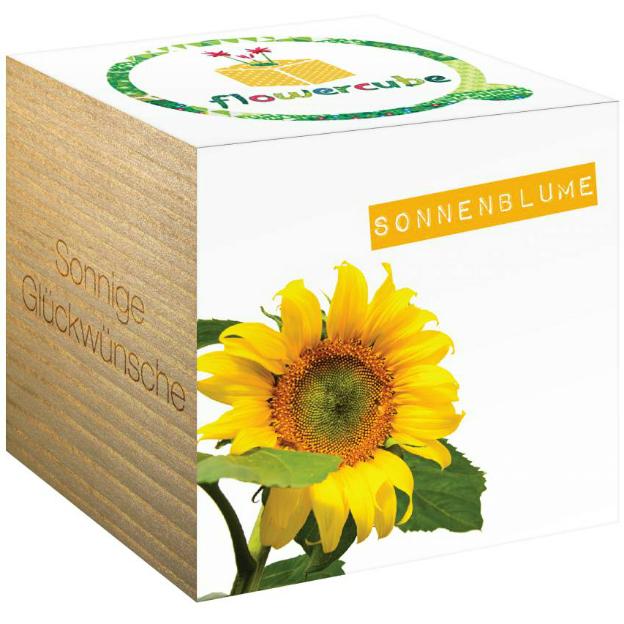 Boîte à fleurs FlowerCube Tournesol