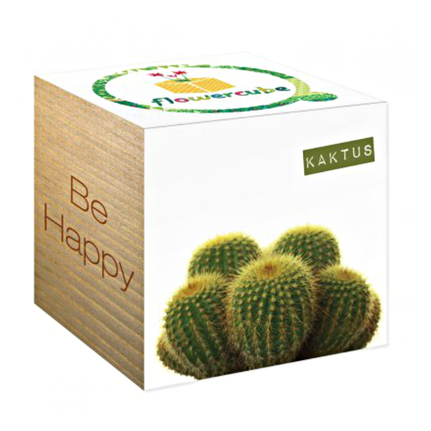 "Cactus FlowerCube ""Be Happy"""