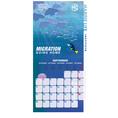 Finding Dory Kalender 2017 inkl. Miniposter