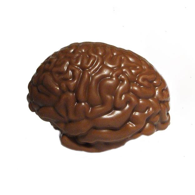 Notfallhirn aus Schokolade