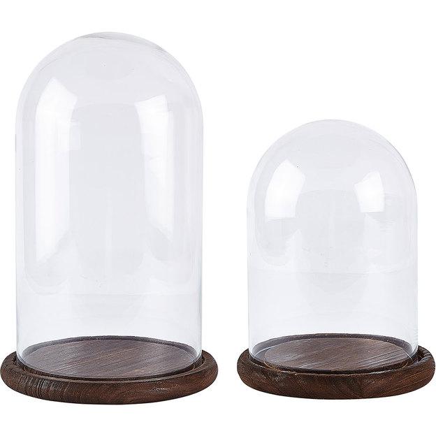 Glasglocke mit Holzboden von Bovictus