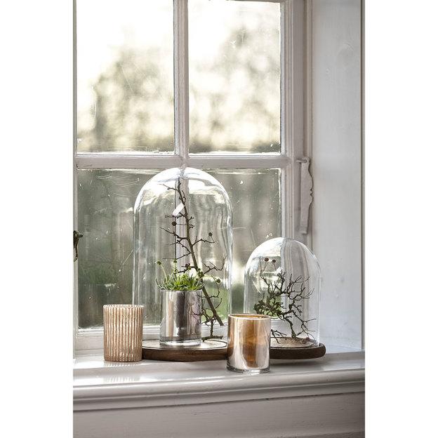 Glasglocke mit Holzboden