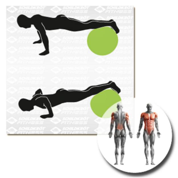 Schildkröt Fitness Gymnastikball 75cm