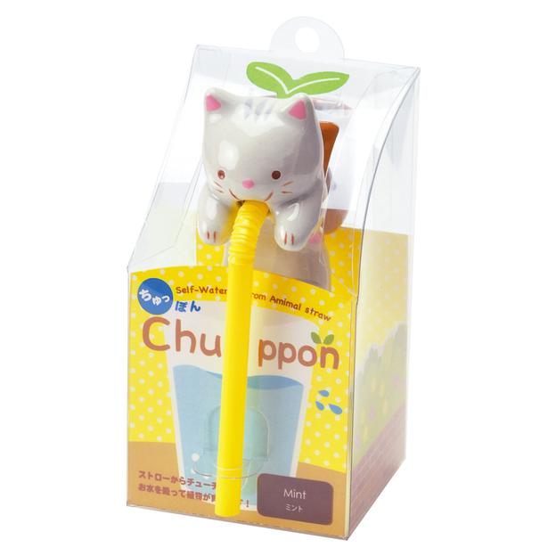 Chuppon Katze - Pfefferminze