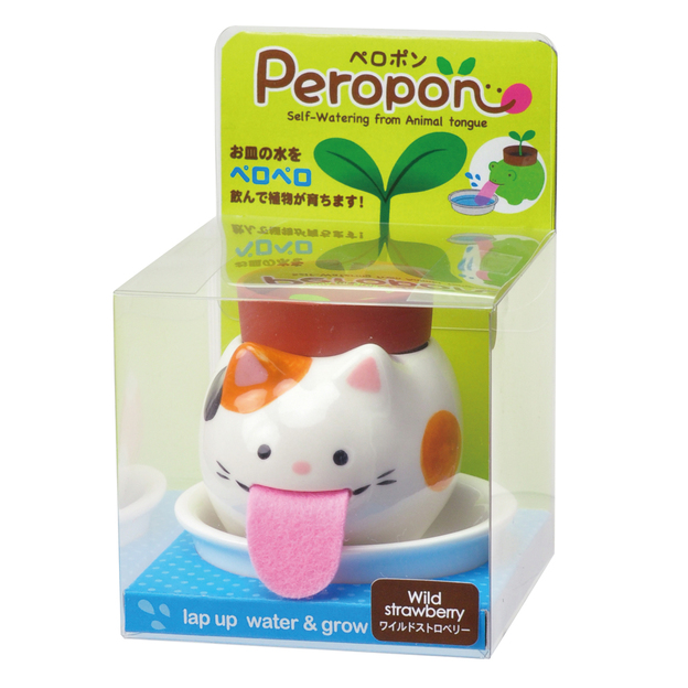 Peropon chat - fraises sauvages