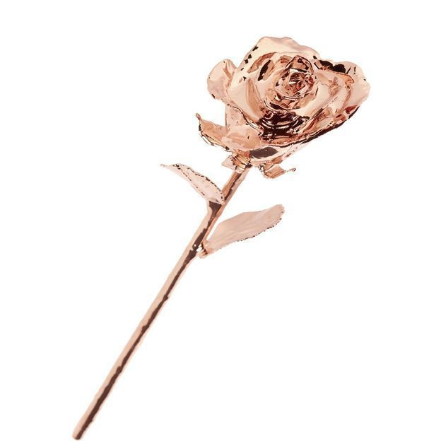 Rose in Rosé-Gold
