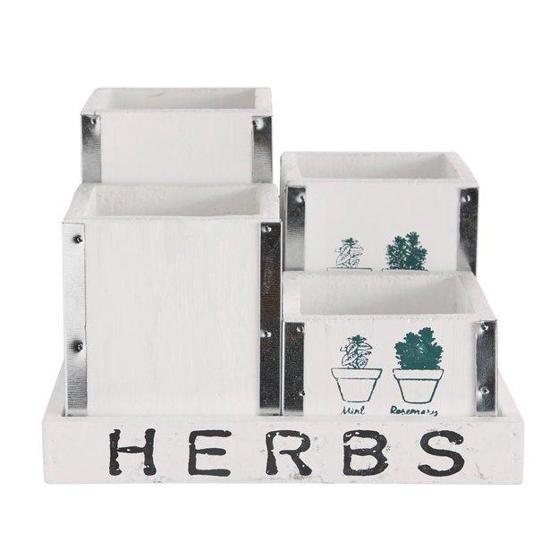 Pflanzenensemble Herbs 5er Set