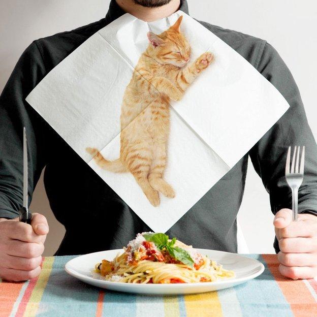 Papierservietten Katzen
