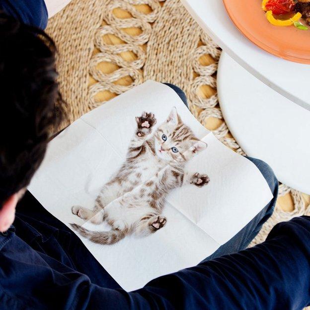 Serviettes chats