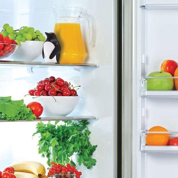 Chill Bill Geruchsneutralisierer für den Kühlschrank