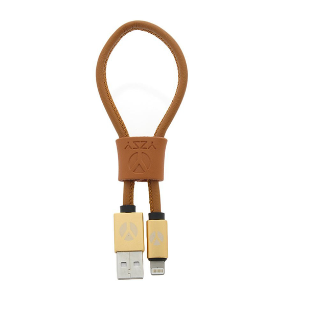 DCS Câble USB Lightning 25cm  Brown Leather