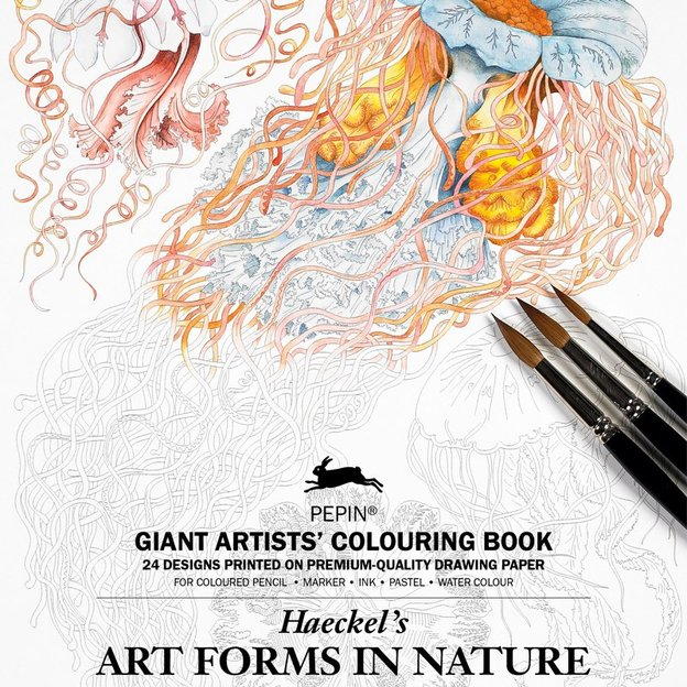 Livre à colorier XL ARTFORMS IN NATURE 24 pages
