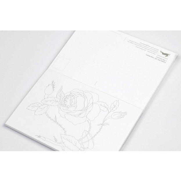 Livre de coloriage pour adulte, format carte postale