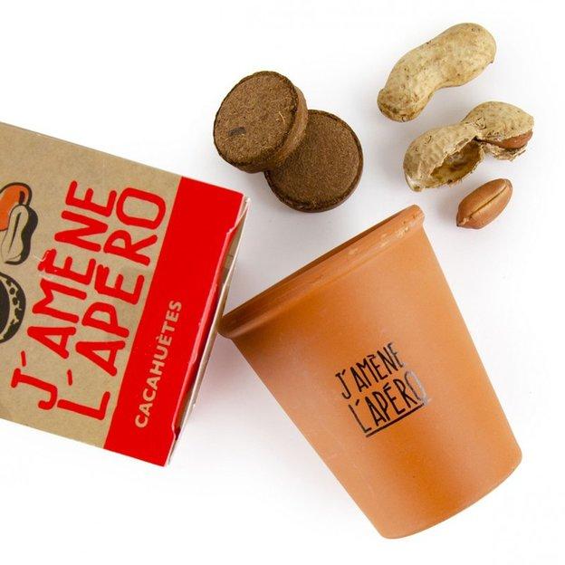 Cacahuète à faire pousser – J'amène l'apéro