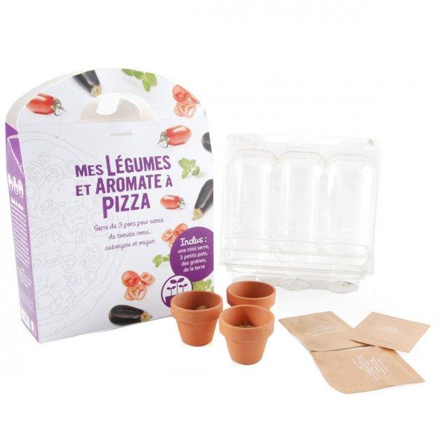 Pflanzen-Set Gemüse für Pizza