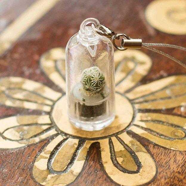 Schlüsselanhänger Mini-Kaktus