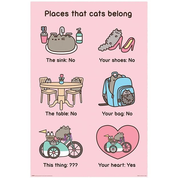 Pusheen Poster Places Cats Belong