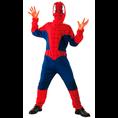 Déguisement Spider-Man, L