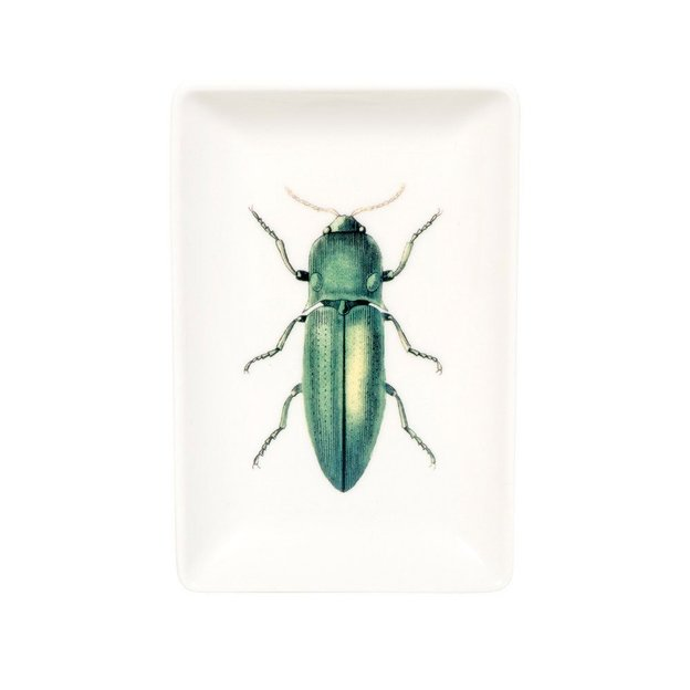 Schmuckschale Käfer