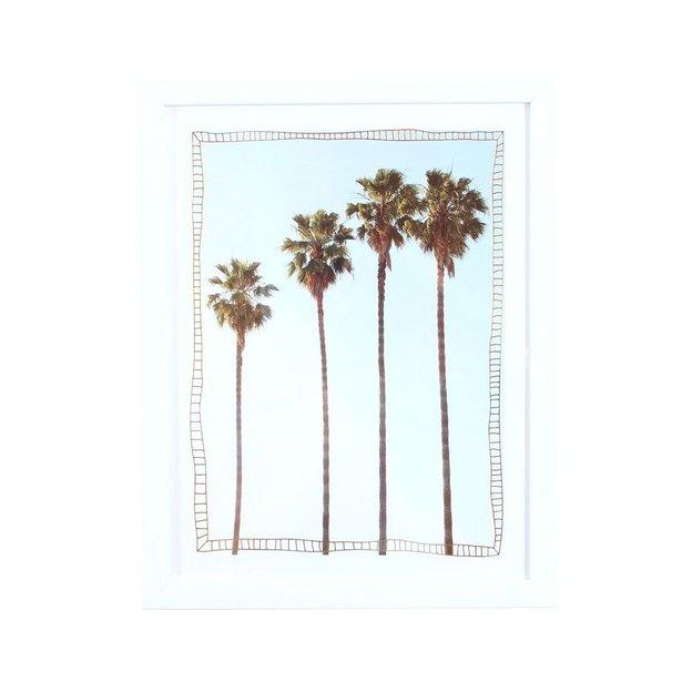 Bild mit Rahmen Palmen