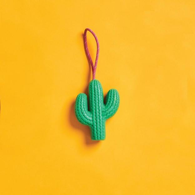 Savon cactus Sunnylife sur un cordon