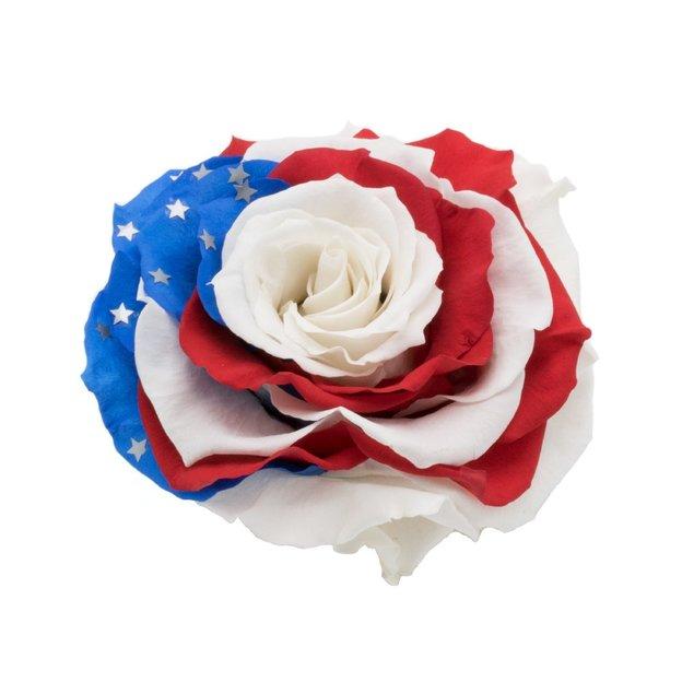 Rose XXL drapeau USA