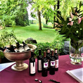 Weinproben bei dir zu Hause (für 6 Personen)