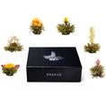 Coffret Creano 6 fleurs de thé blanc dans une boîte en métal