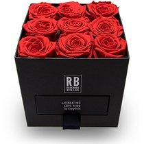 "Ceylor Rosenbox ""Valentine's Day"" by Rafael Beutl"