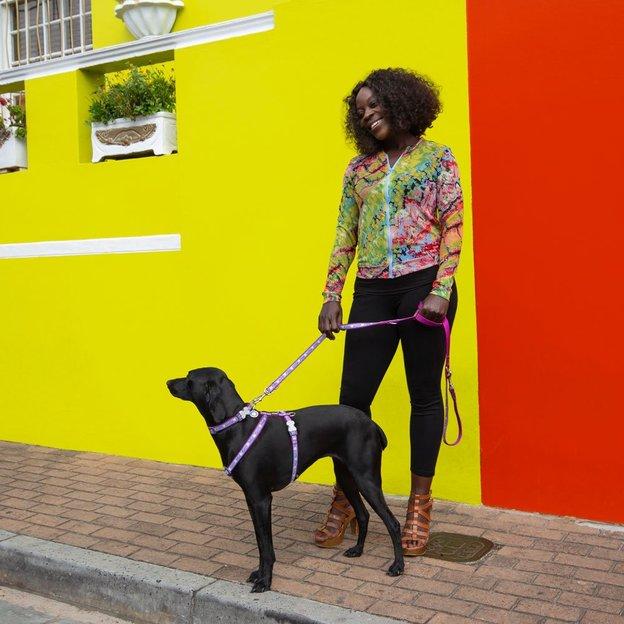 Harnais pour chien Red Dingo Licorne M