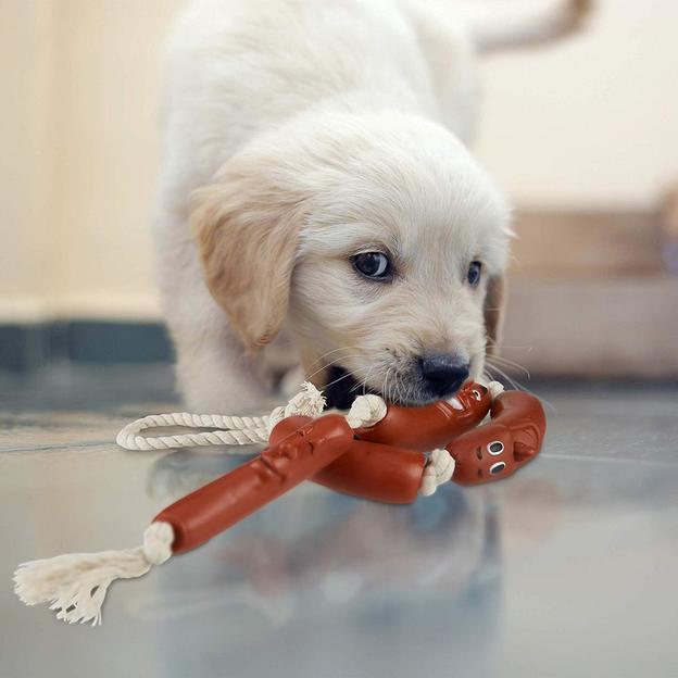 Jouet pour chien, chapelet de saucisses