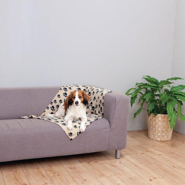 Couverture personnalisée pour chien / chat