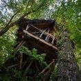 Romantische Übernachtung im Baumhaus «Feenzauber» (für 2 Personen)