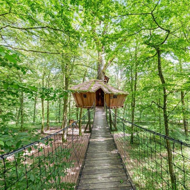 1 nuit romantique et insolite dans les arbres dans la cabane El Sueno ( 2 pers.)