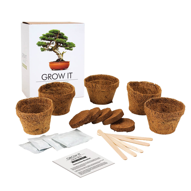 Plante ton Bonsaï Kit Grow it DIY