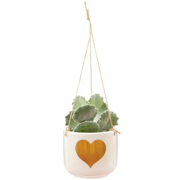 Vase à suspendre cœur