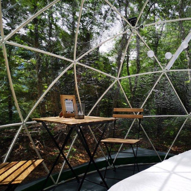 Nuit romantique et insolite dans une bulle au milieu de la forêt à Engstlenalp (2 pers.)