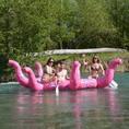 Aare Erlebnis mit dem Oktopusboot (für 4-5 Personen)