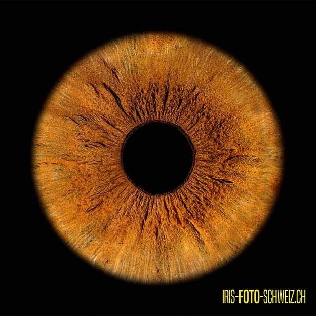 Iris Fotoshooting - Einfach Du (für 1 Person)