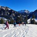 Schneeschuhtour Schnupperkurs in Liechtenstein (für 1 Person)