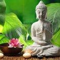 Méthode TRE® de libération des tensions liées au stress (pour 1 personne)